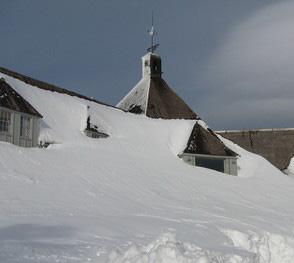 snowed in-crop